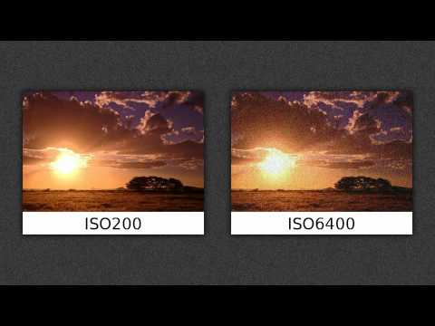 Gute Fotografen-Basics