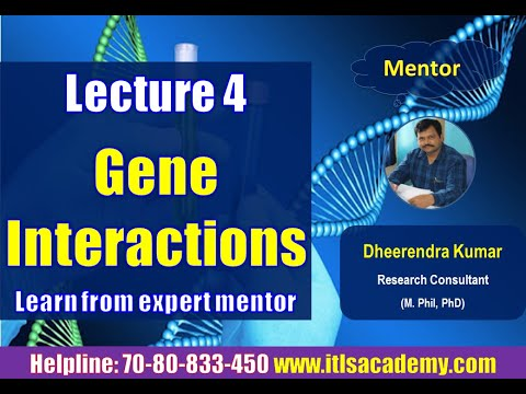 Gene interaction