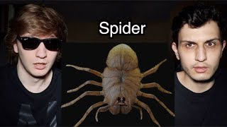 We Bought A PET SPIDER Off The Dark Web!