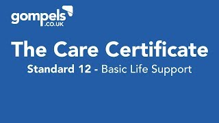 The Care Certificate Standard 12 Answers & Training - Basic Life Support