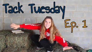 everything WRONG with 5 point breastplates || TACK TUESDAY ep.1