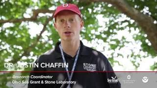 Harmful Algal Bloom Research: Ohio State's Dr. Justin Chaffin and Citizen Science