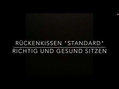 SITBACK Standard - Rückenkissen fürs Auto