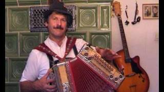D´Neuneralm Musi    Bernhard Ostler Harmonika   Boarischer