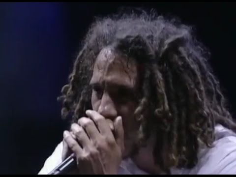 Rage Against the Machine - Born Of A Broken Man - 7/24/1999 - Woodstock 99 East Stage (Official)