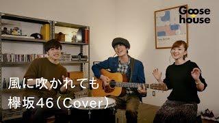 風に吹かれても/欅坂46(Cover)