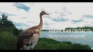 Амурская область за 1 минуту (ВЭФ-2017)
