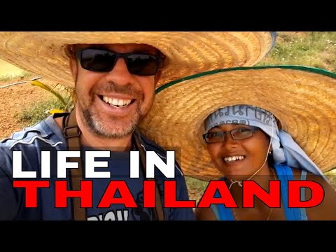 LIFE IN THAILAND ~ A TYPICAL DAY LIVING IN THAILAND VLOG