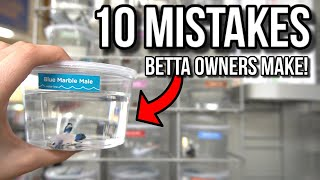 10 MISTAKES Betta Fish Owners Make!