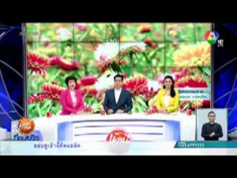 VDO :: Baan Nam Kerm