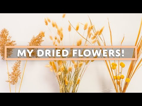 mp4 Home Decor Dry Flowers, download Home Decor Dry Flowers video klip Home Decor Dry Flowers