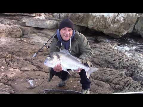 Cause non costose per pesca estiva delle dimensioni grandi