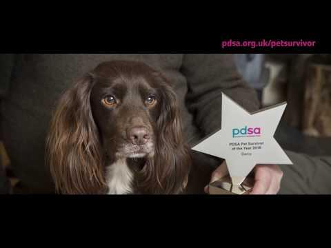 PDSA Pet Survivor 2016 - Darcy is our winner!