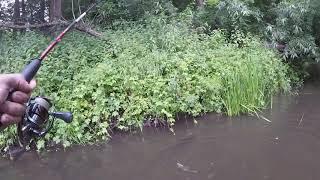 Что ловят в реке прохладная калининградская область рыбалка