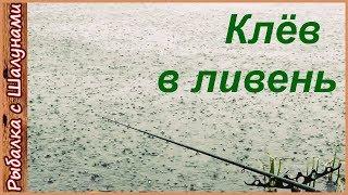 Зонты для рыбалке дам