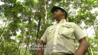 Don Carlos Miranda y el monitoreo de la fauna en el bosque