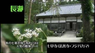 長瀞編埼玉県の観光