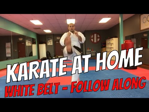 Karate at Home : Karate For Beginners - Free Karate Lessons ...