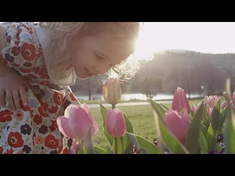 My Heavenly Father Loves Me | BYU Young Ambassadors feat. violinist Megumi Terry and friends