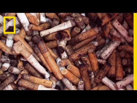 Turning Cigarette Butts Into Park Benches   National Geographic thumbnail