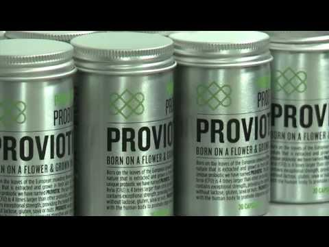 ProViotic 500 mg probiótico vegano y orgánico, 24 tabletas, Salud Viva