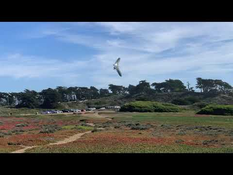 Hang Glider Pilot Shows How to Perform the Perfect Landing