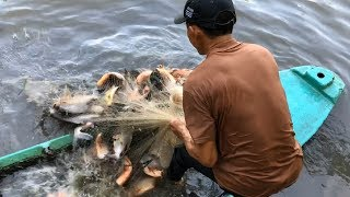 Cast Net Fishing GIANT Piranha Fish GONE WRONG!