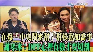 【精彩】在爆「中央閨密幫」幫楊蕙如喬事 謝寒冰:DPP心裡有數才要切割