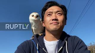 No Hoots Given! Barn Owl Rides Bike With Owner
