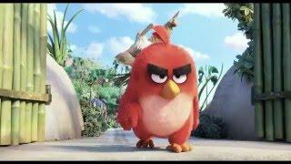 Angry Birds - Der Film Film Trailer