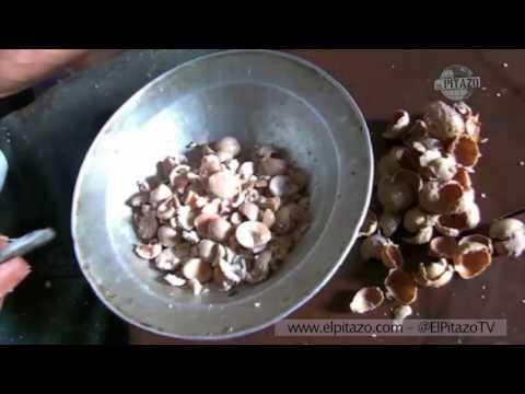 El tratamiento bueno contra la psoriasis