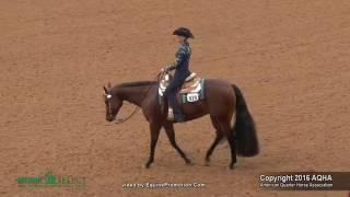 A Judges Perspective: 2016 Select Horsemanship World Champion