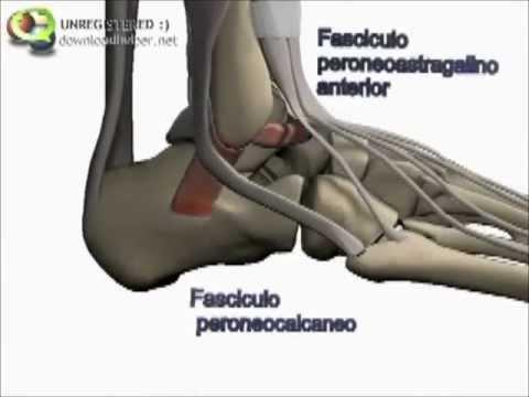La terapia magnética en la osteocondrosis de la columna cervical