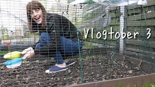 Lazy-ish Sunday, New Camera & Cleaning Out the Chicken Run • Vlogtober Day 3