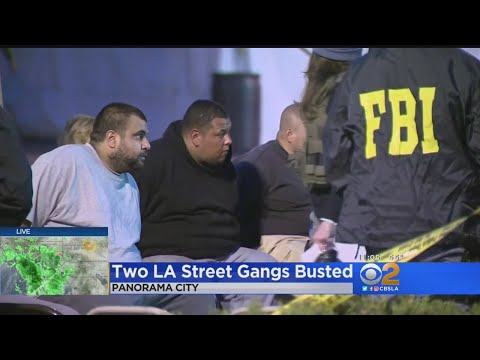 36 Gang Members From 2 Violent Gangs Arrested In FBI-LAPD