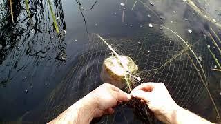 Ловля рыбы мережами и вентерями