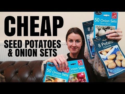 Gardening On A Budget - Get Cheap Seed Potatoes & Onion Set From