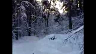 Зима Пенза 17.01.14