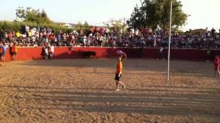 preview picture of video 'Fiesta del Cristo de Saceruela 2011 Toros 6/6 Cucaña'