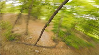 Forest Proximity | FPV Freestyle