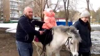 Первый раз катаемся на пони