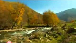 """Республика Казахстан, """"Каражорга"""" со звездами КТК! национальный танец."""