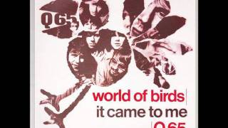 Q65 - World Of Bird