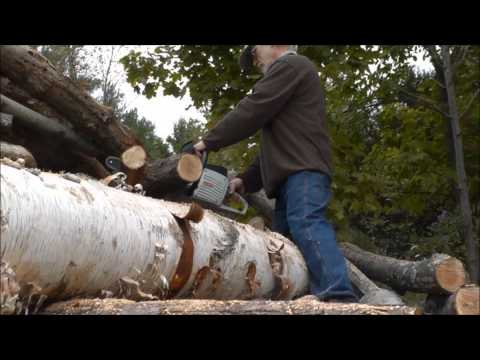 Oregon 40V battery operated chainsaw 2014