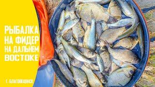 Все для рыбалку благовещенск амурская область