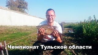 Отчеты о рыбалки по тульской области