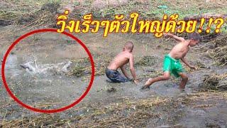 #จับปลาอยู่ดีๆเจอ!!แบบนี้วิ่งกันกระจาย!?