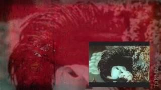 Tarmac - Je Cherche - (with Lyrics)