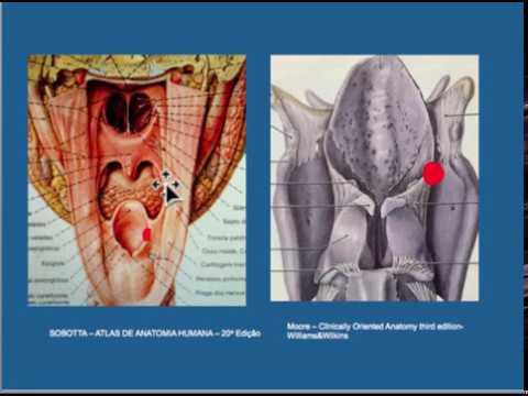Crijevni paraziti kod djece