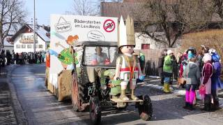 preview picture of video 'Faschingszug Bichl 2015'